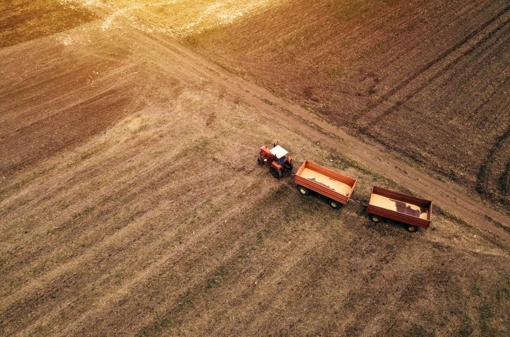 insumos-agricolas