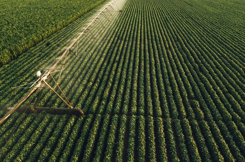 o-que-e-agroindustria