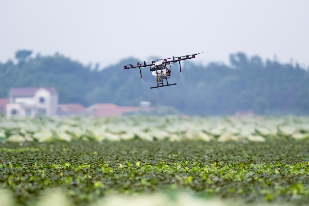 sensoriamento-remoto-na-agricultura